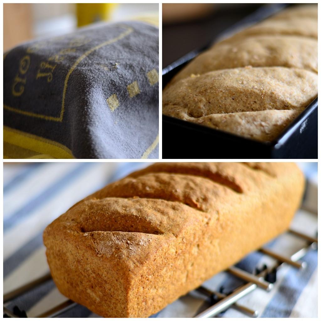 Dinkelbrot, Brot backen, Montagsrezept