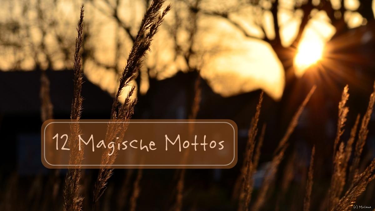 """12 Magische Mottos #1 """"Schilder und Schriften"""""""