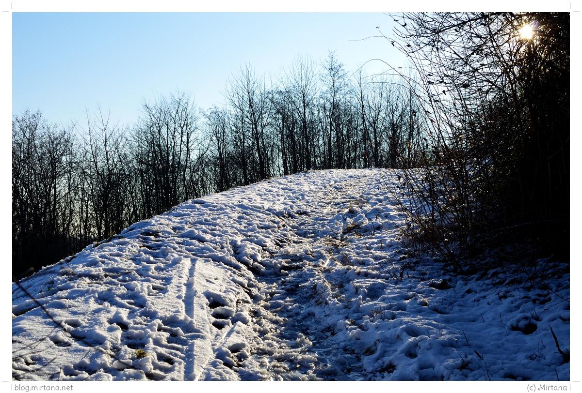 Kleines Wintermärchen.