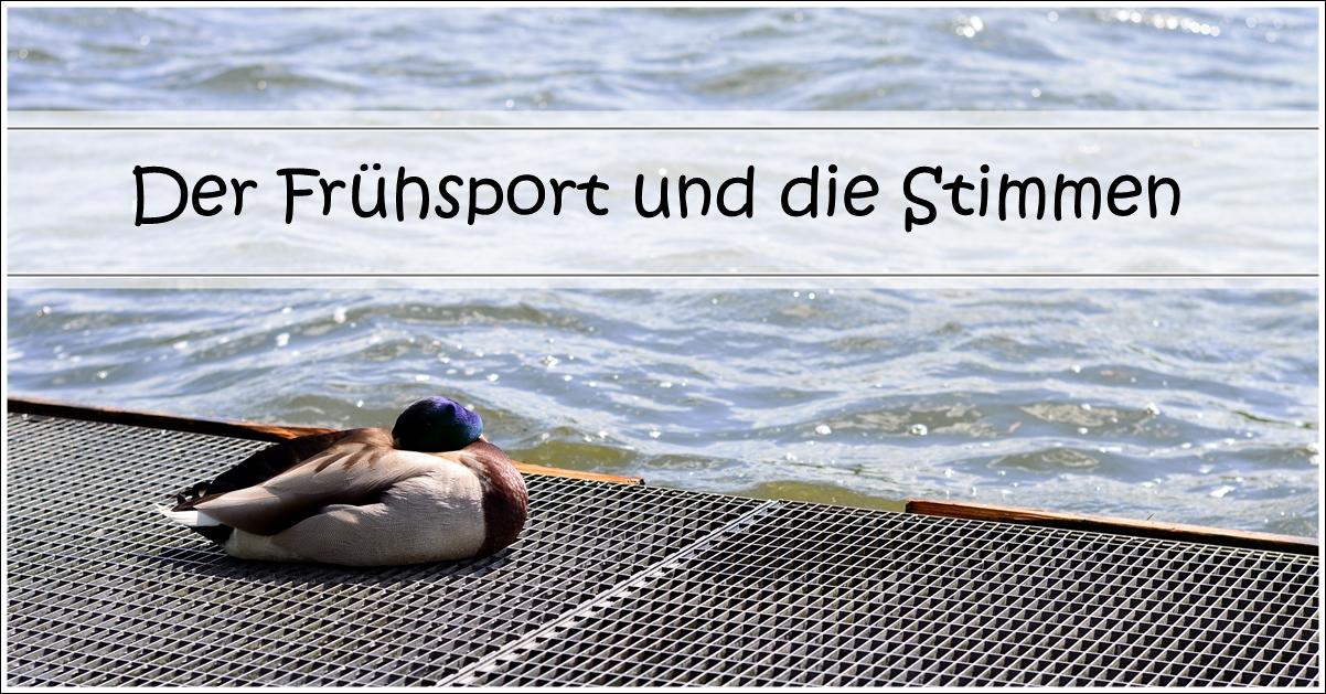 Der Frühsport und die Stimmen.