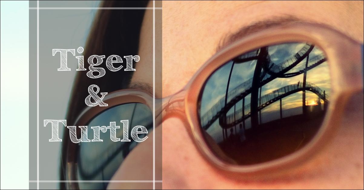 Zu Besuch auf Achterbahn: Tiger & Turtle