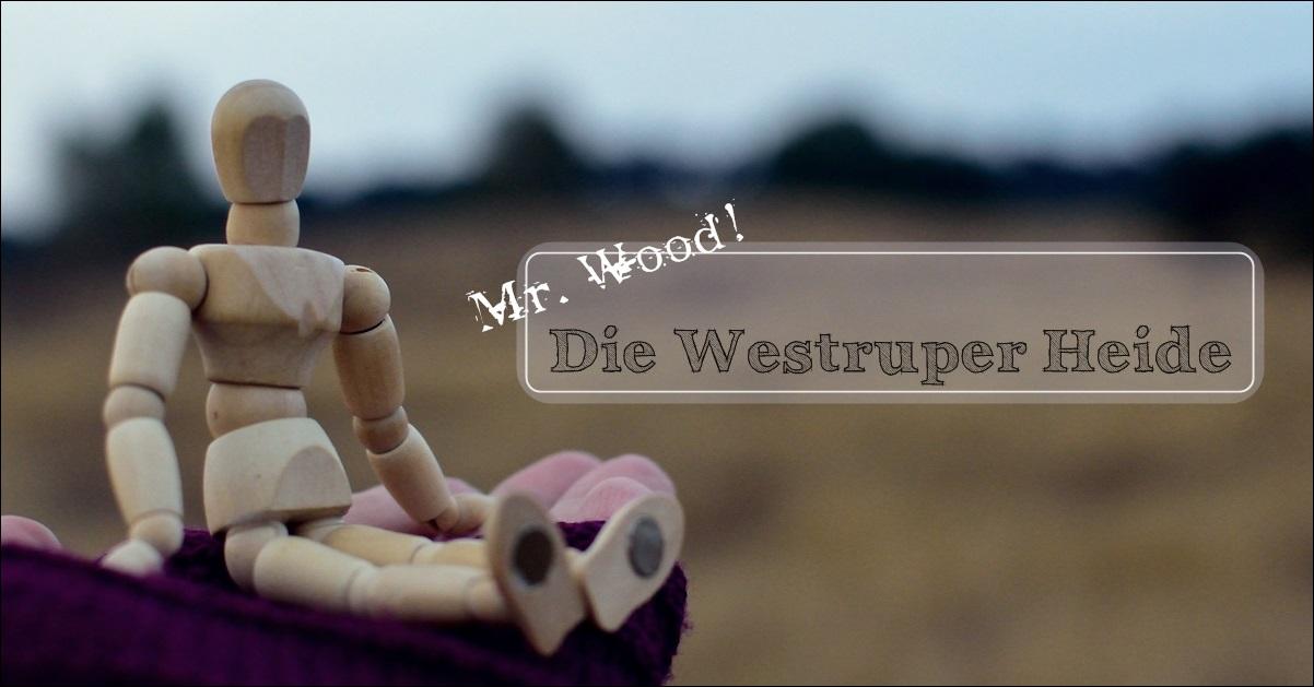 Mr. Wood und die Westruper Heide