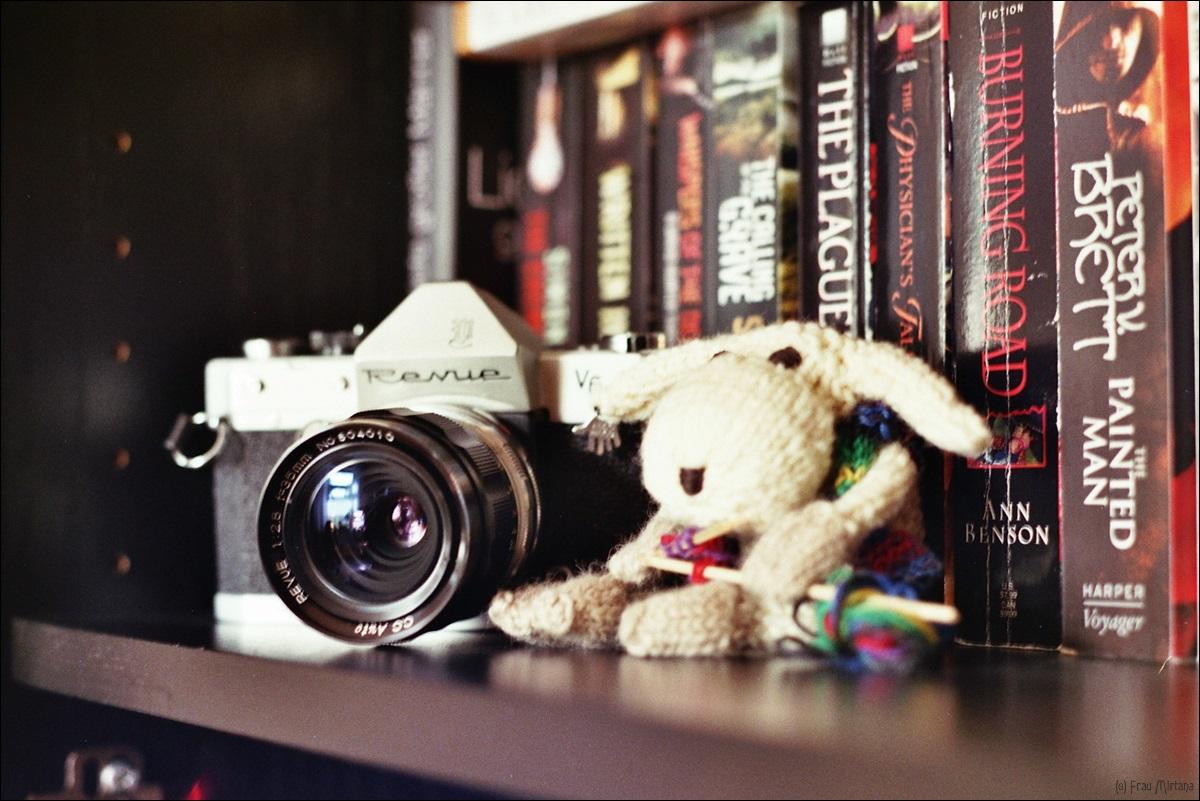 Realitätscheck; Kameraliebe; analog