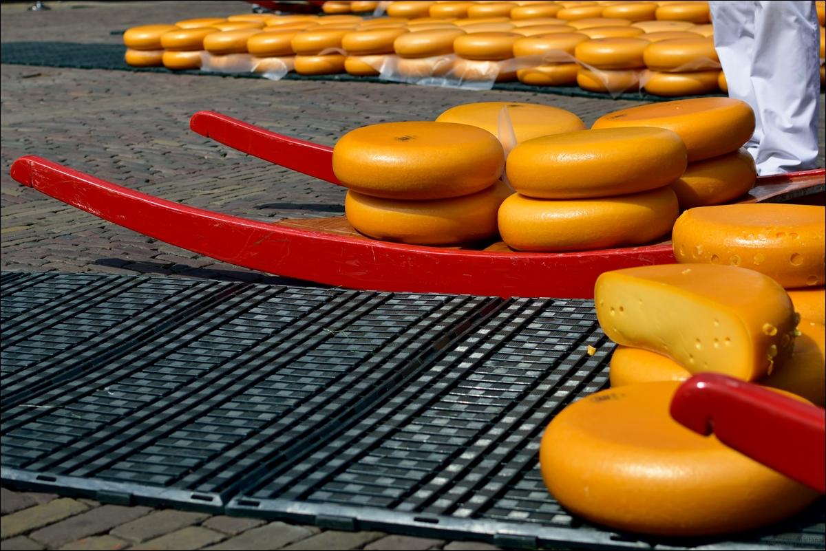 Unterwegs In Alkmaar Käsemarkt