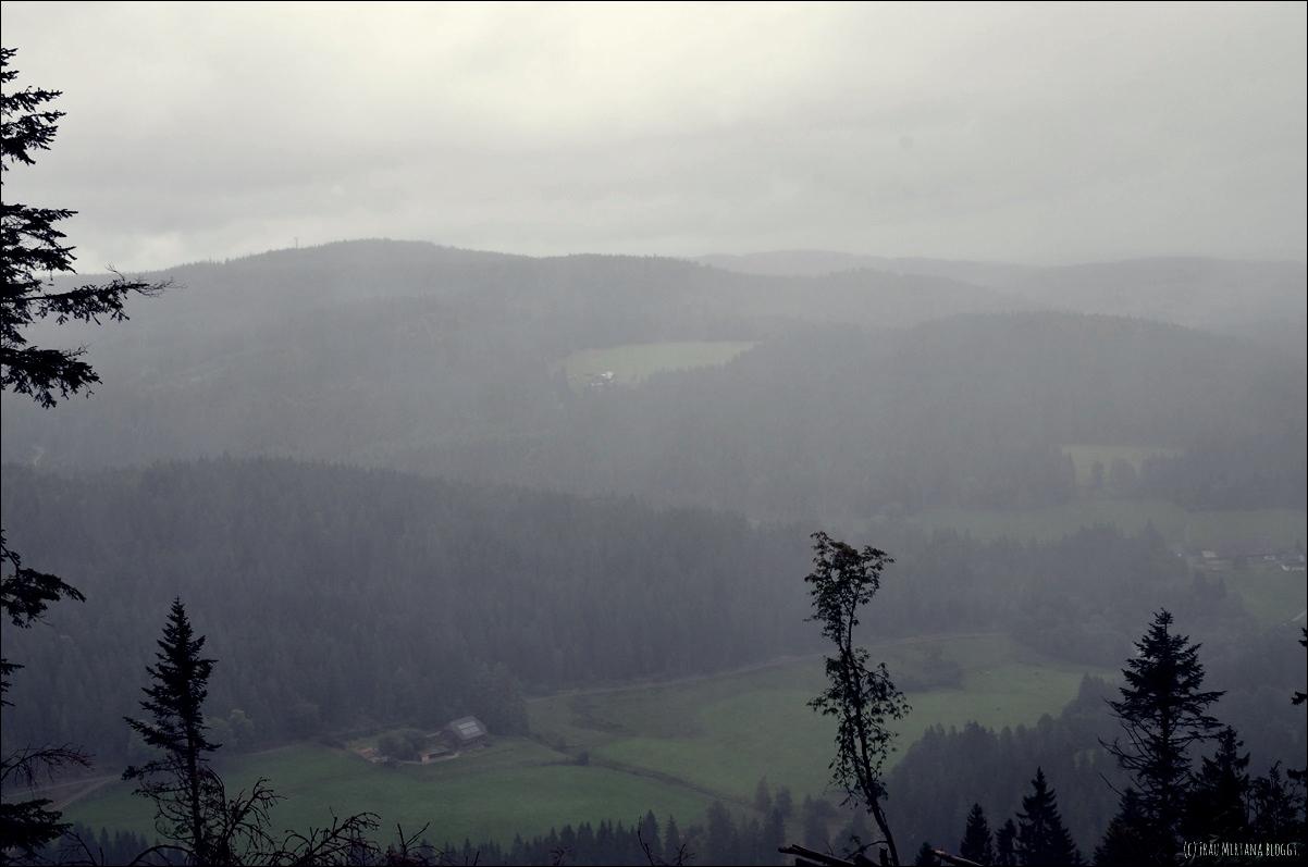 Rheinfall von Schaffhausen