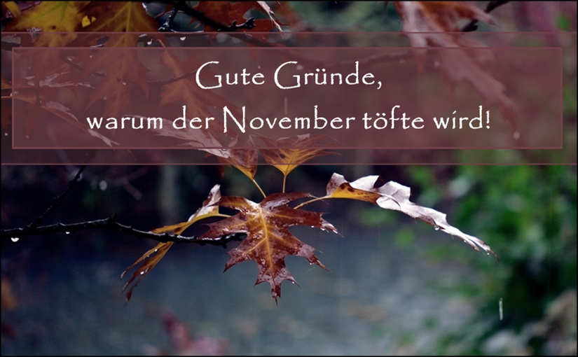 Der graue November Header