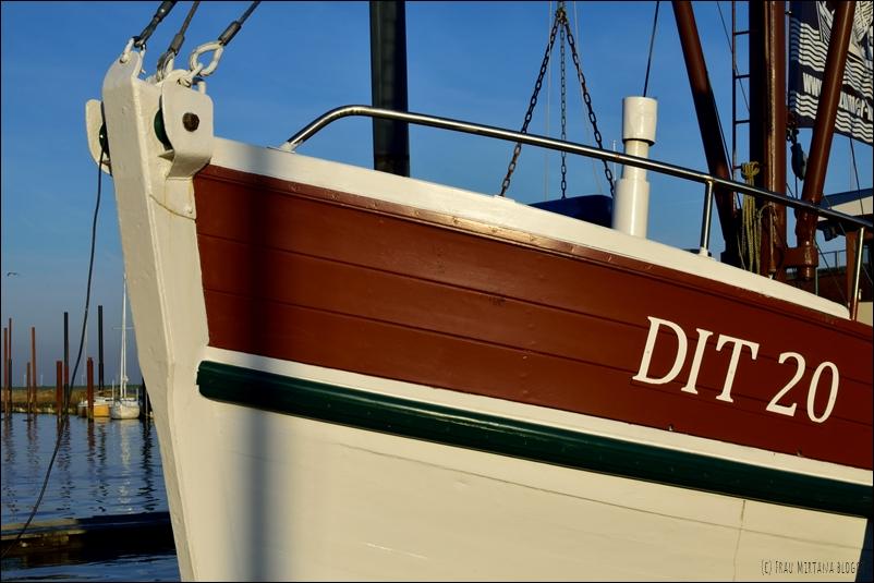Oktober in Ditzum - Fischkutter Hafen